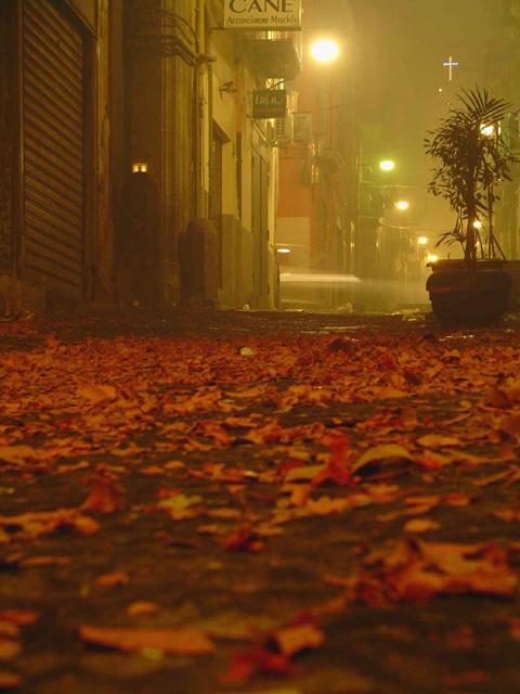Le tapis rouge gisant après l'explosion d'une «batteria» de Capodanno