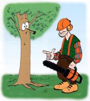 B cheron une profession d homme des bois - Jeux de tronconneuse qui coupe les arbres ...