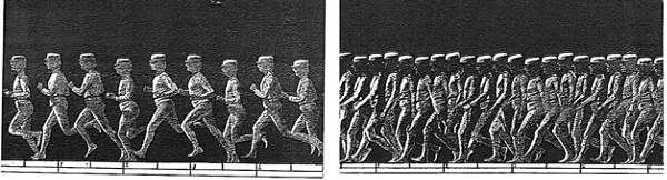 rodda et al Figure 06