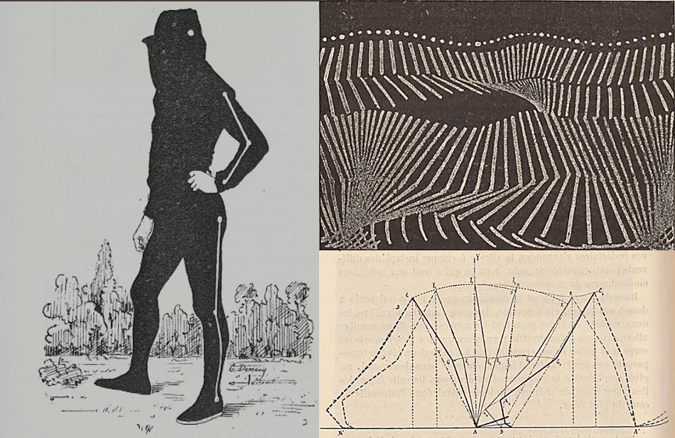 rodda et al Figure 07