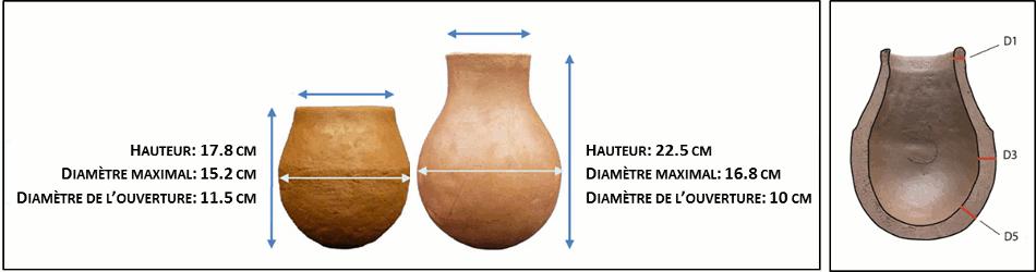 rodda et al Figure 15